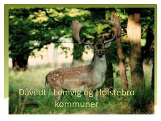 Dåvildt i Lemvig og Holstebro kommuner