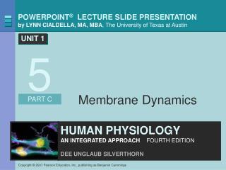 Membrane Dynamics