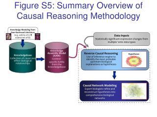 Figure S5: Summary Overview of Causal Reasoning Methodology