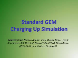 Standard GEM Charging Up Simulation