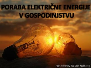 PORABA ELEKTRIČNE ENERGIJE  V GOSPODINJSTVU