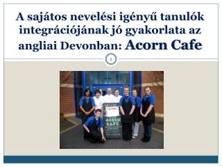 A  sajátos nevelési igényű tanulók integrációjának jó gyakorlata az angliai Devonban:  Acorn  Cafe