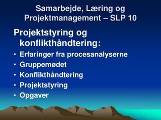 Samarbejde, Læring og Projektmanagement – SLP 10