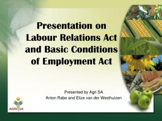 Presentation on  Labour Relations Act and Basic Conditions  of Employment Act