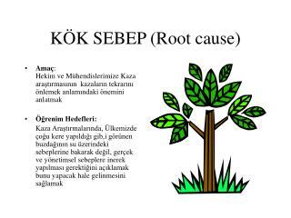 KÖK SEBEP (Root cause)