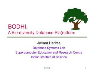 BODHI, A Bio-diversity Database Pla(n)tform