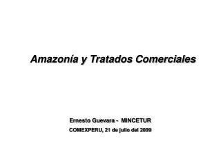 Amazonía  y Tratados Comerciales
