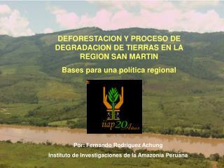 IMPACTO  AMBIENTAL:  Deforestación