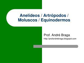 Anelídeos / Artrópodos / Moluscos / Equinodermos