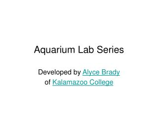Aquarium Lab Series