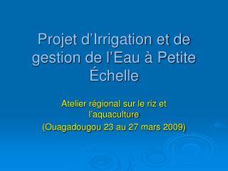 Projet d'Irrigation et de gestion de l'Eau à Petite Échelle