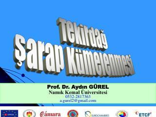 Prof. Dr. Aydın GÜREL Namık Kemal Üniversitesi 0532-2817363 a.gurel2@gmail