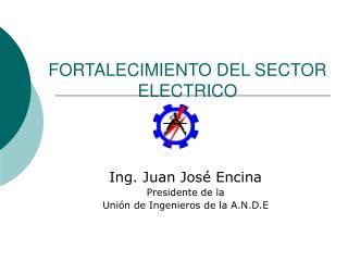 FORTALECIMIENTO DEL SECTOR ELECTRICO