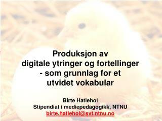 Produksjon av  digitale ytringer og fortellinger  - som grunnlag for et  utvidet vokabular