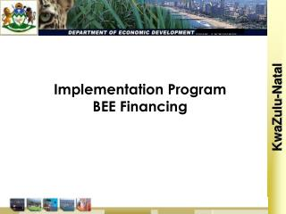 Implementation Program BEE Financing