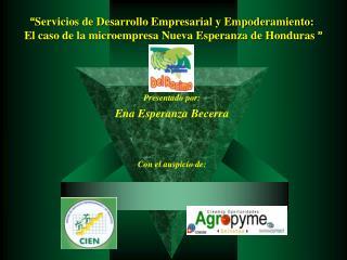 """"""" Servicios de Desarrollo Empresarial y Empoderamiento:"""