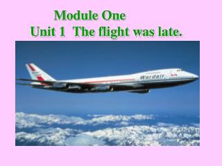 Module One Unit 1  The flight was late.