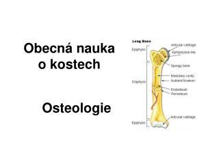 Obecná nauka  o kostech