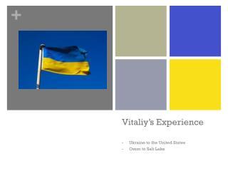 Vitaliy�s  Experience
