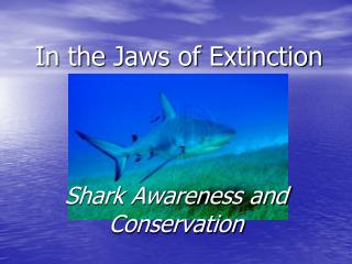 In the Jaws of Extinction