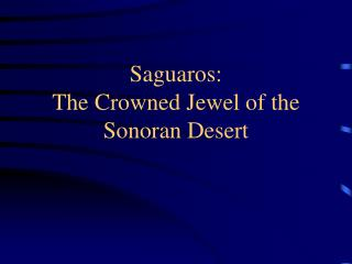 Saguaros: The Crowned Jewel of the Sonoran Desert