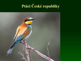 Ptáci České republiky