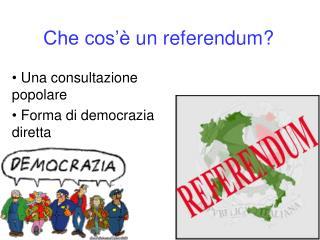 Che cos�� un referendum?