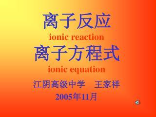 离子反应 ionic reaction 离子方程式 ionic equation