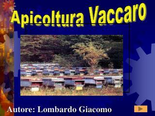 Apicoltura Vaccaro