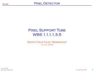 Pixel Support Tube WBS 1.1.1.1.3.5 Santa Cruz Cost Workshop July 9, 2003