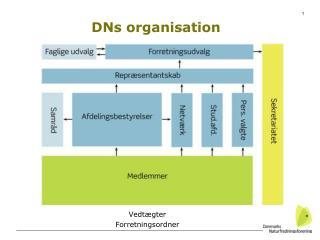 DNs organisation