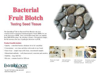 Bacterial  Fruit Blotch Testing Seed Tissue