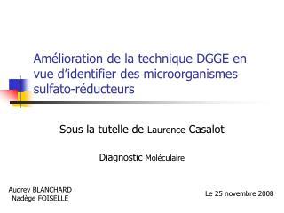 Amélioration de la technique DGGE en vue d'identifier des microorganismes sulfato-réducteurs
