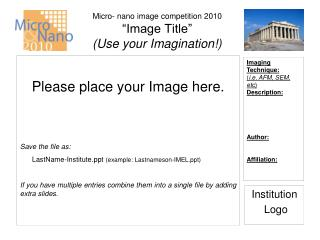 """Micro- nano image competition 2010 """"Image Title""""  (Use your Imagination!)"""