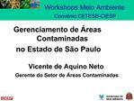 Workshops Meio Ambiente  Conv nio CETESB-CIESP