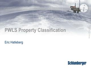 PWLS Property Classification