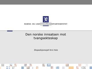 Den norske innsatsen mot tvangsekteskap