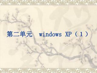 第二单元   windows XP (1)