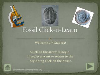 Fossil Click-n-Learn