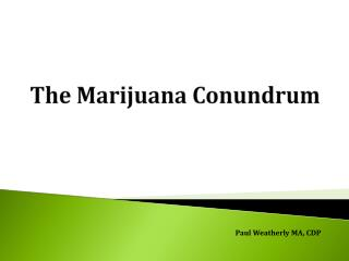 The  M arijuana Conundrum
