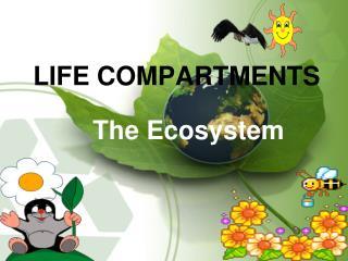 Life Compartments