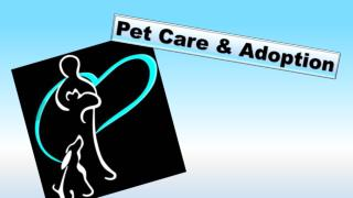 Pet Care & Adoption