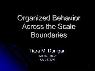 Organized Behavior Across the Scale Boundaries