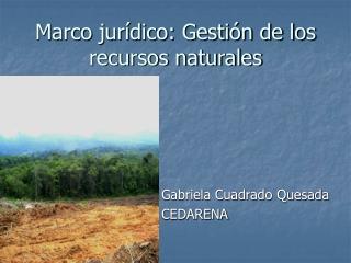 Marco jurídico: Gestión de los recursos naturales