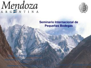 Seminario Internacional de Peque�as Bodegas