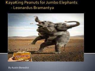 KayaKing  Peanuts for Jumbo Elephants        -  Leonardus Bramantya