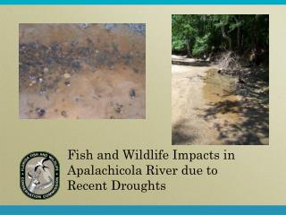 Fish and Wildlife Impacts in Apalachicola River due to Recent Droughts