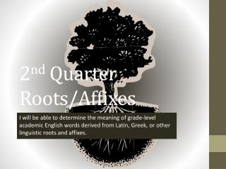 2 nd  Quarter Roots/Affixes