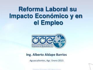 Aguascalientes, Ags. Enero 2013.