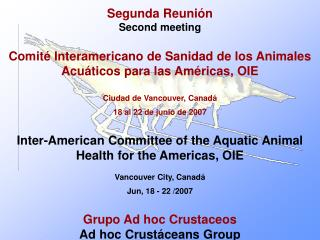 Segunda Reuni�n  Second meeting